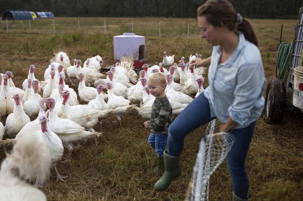 Rachel Shenk, right, and her 3-year-old son, Mason Shenk, step into the turkey enclosure on their family farm in Newport, N.C. Rachel and her husband Joe Shenk started their farm in 2017 with a desire to create a life that allowed them to focus on working together as a family. They now farm turkeys, chickens, and pigs.